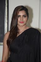 Pavani Reddy in Black Saree Sleeveless Choli ~  Exclusive 09.JPG