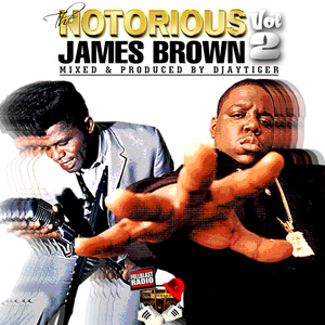 The Notorious James Brown Vol 2