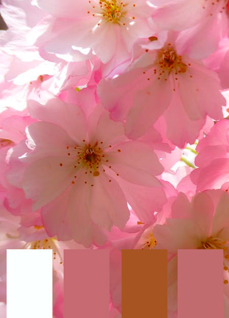 paletas-de-colores-2-del-mes-de-febrero