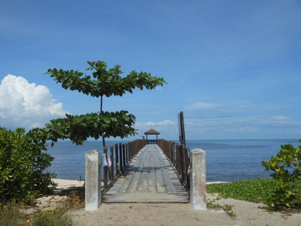 Monkey Beach And More In Penang Malaysia