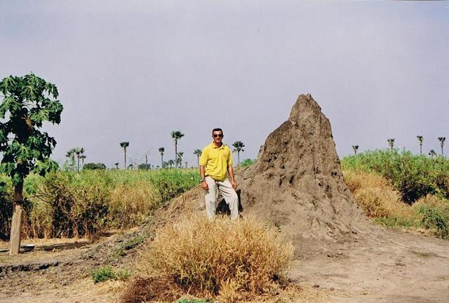 Termitero en Senegal (2003)
