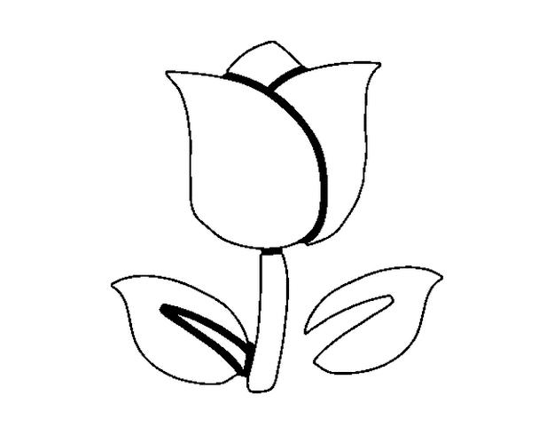 Tulip Coloring Sheet
