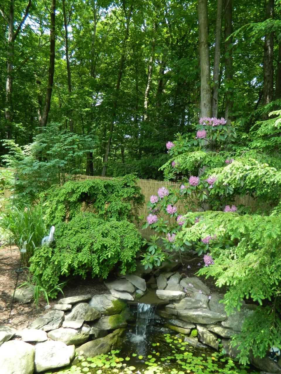 Pam S English Cottage Garden
