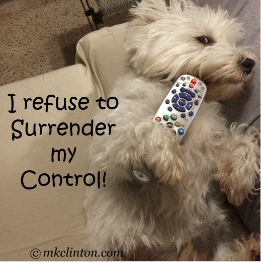 Westie with television remote control