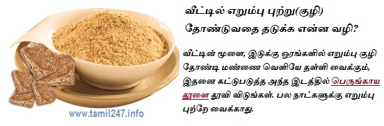 veettil erumbu puttru tonduvadhai thadukka enna vazhi?, erumbu puttru, perungaya thool, asafoetida powder, Natural tips to control ant in home, ants control, erumbu kuzhi