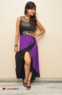 Telugu Actress Rachana Smith Stills at Money is Honey Audio Release  0096.jpg