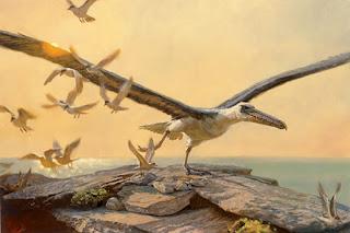 Aves gigantes extintas