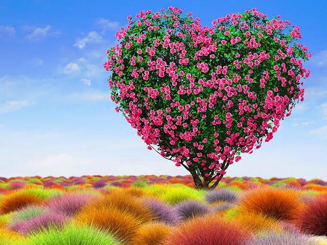 3DCG、リアルイラスト、ハートのバラ木、帚草、薔薇、イラストレーター検索、イラストレーター一覧、イラスト制作