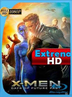 X-Men Días del Futuro Pasado 2014 HD [1080p] Latino [Mega] dizonHD