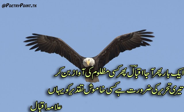 Ek Bar Phir aa Ja Iqbal Phir kisi Muzloom Ki Awaz Ben Kr // Allama Muhammad Iqbal Motivational and Islamic poetry