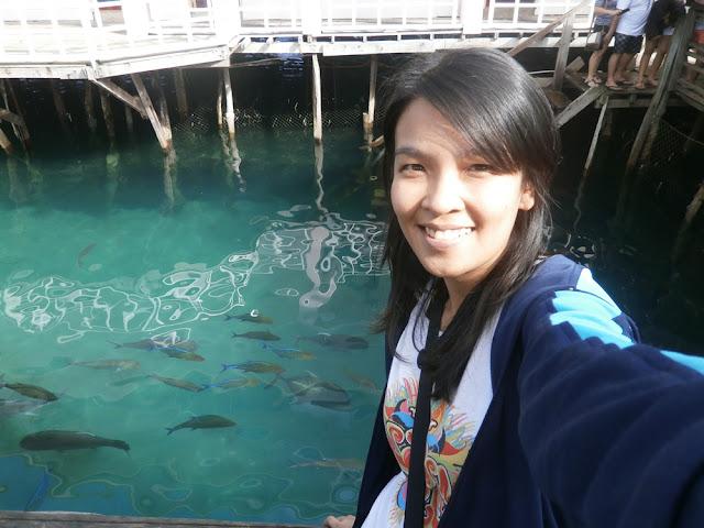 Sibadan Fish Cage