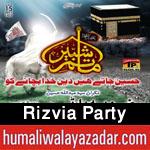 http://www.humaliwalayazadar.com/2015/06/rizvia-party-nohay-2016.html
