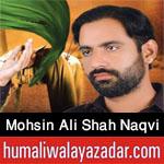 http://www.humaliwalayazadar.com/2016/10/syed-mohsin-ali-shah-naqvi-nohay-2017.html