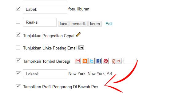 Tampilkan Profil Pengarang Di Bawah Pos