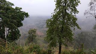 রুইলুই পাড়া