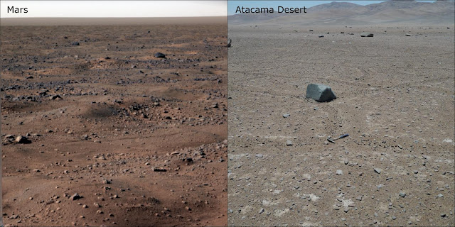 Life in world's driest desert seen as sign of potential life on Mars