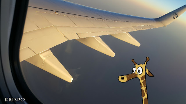 egipto y jirafa desde ventanilla de avion