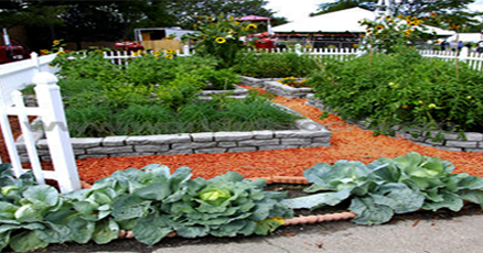 How to Make a Vegetable Garden? -Vegetable Garden Plan and Layout Idea - Floriculture Care - House Plants
