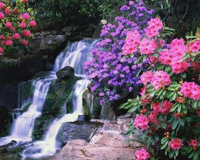 Resultado de imagem para primavera começa dia 22 setembro 2016