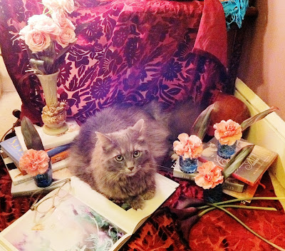 Cecilia is catching up on some of her cat reading - Stein Your Florist Co.