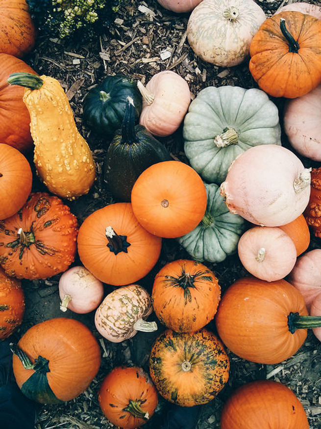 http://www.kadikbabik.pl/2014/09/pumpkins.html