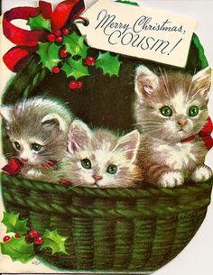 christmas cat 3