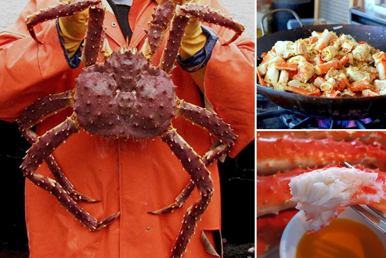 Crab for Sale Online - Frozen Mud Crab Supplier, Crab Meat Seller