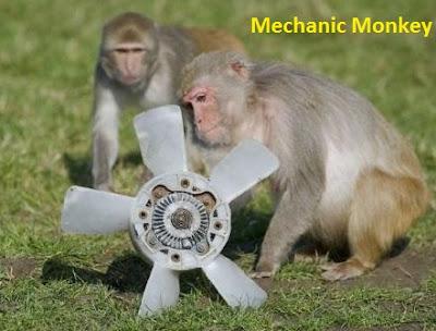 Fun Trends, a car, puppy, car mechanic, cat, monkey, dog, mechanic monkey, animal planet, funny animal, monkey land, jokes animals, animal army, crazy monkey, wow, hi monkey, car, Mechanic,
