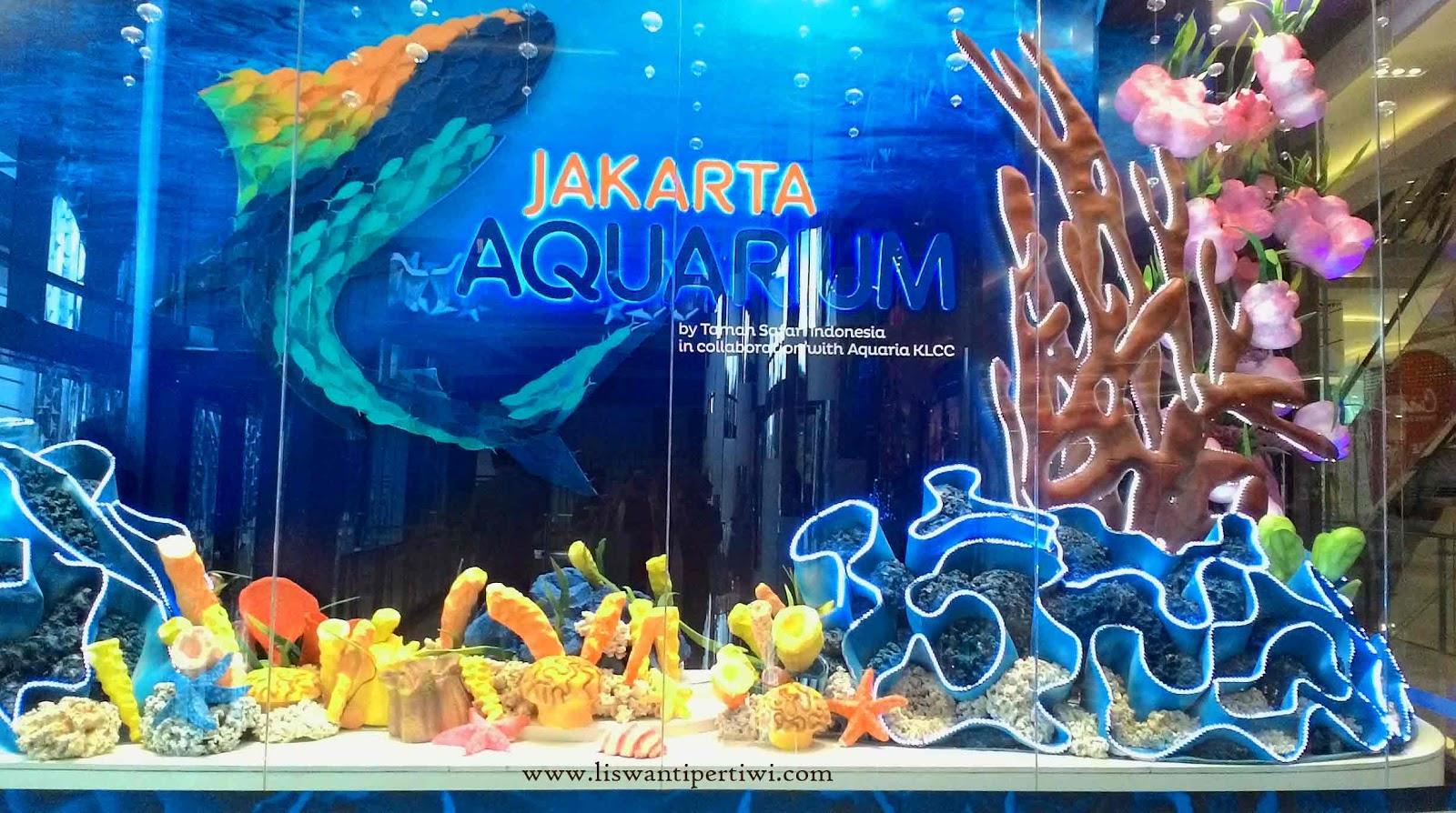 Melihat Penguin Dari Dekat Di Jakarta Aquarium Liswanti