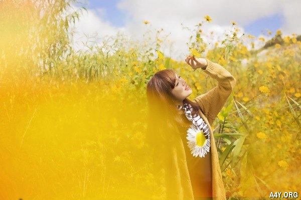cô gái giữa rừng hoa dã quỳ ở Đà Lạt