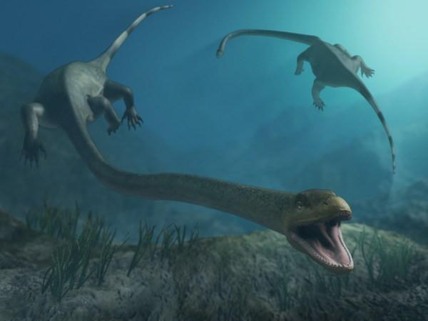 Tanystropheus merupakan reptile darat berukuran 6 meter