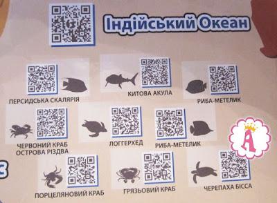 Игровой набор Венно с картой животных Индийского океана