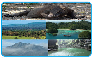 Kehidupan Bernegara dalam Konsep Negara Kesatuan Republik Indonesia (NKRI)