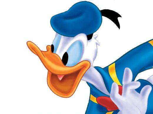 11 Walt Disney Animal Donald Duck Cartoon Wallpaper