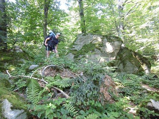 Na południowych zboczach góry Kamień (714 m n.p.m.).