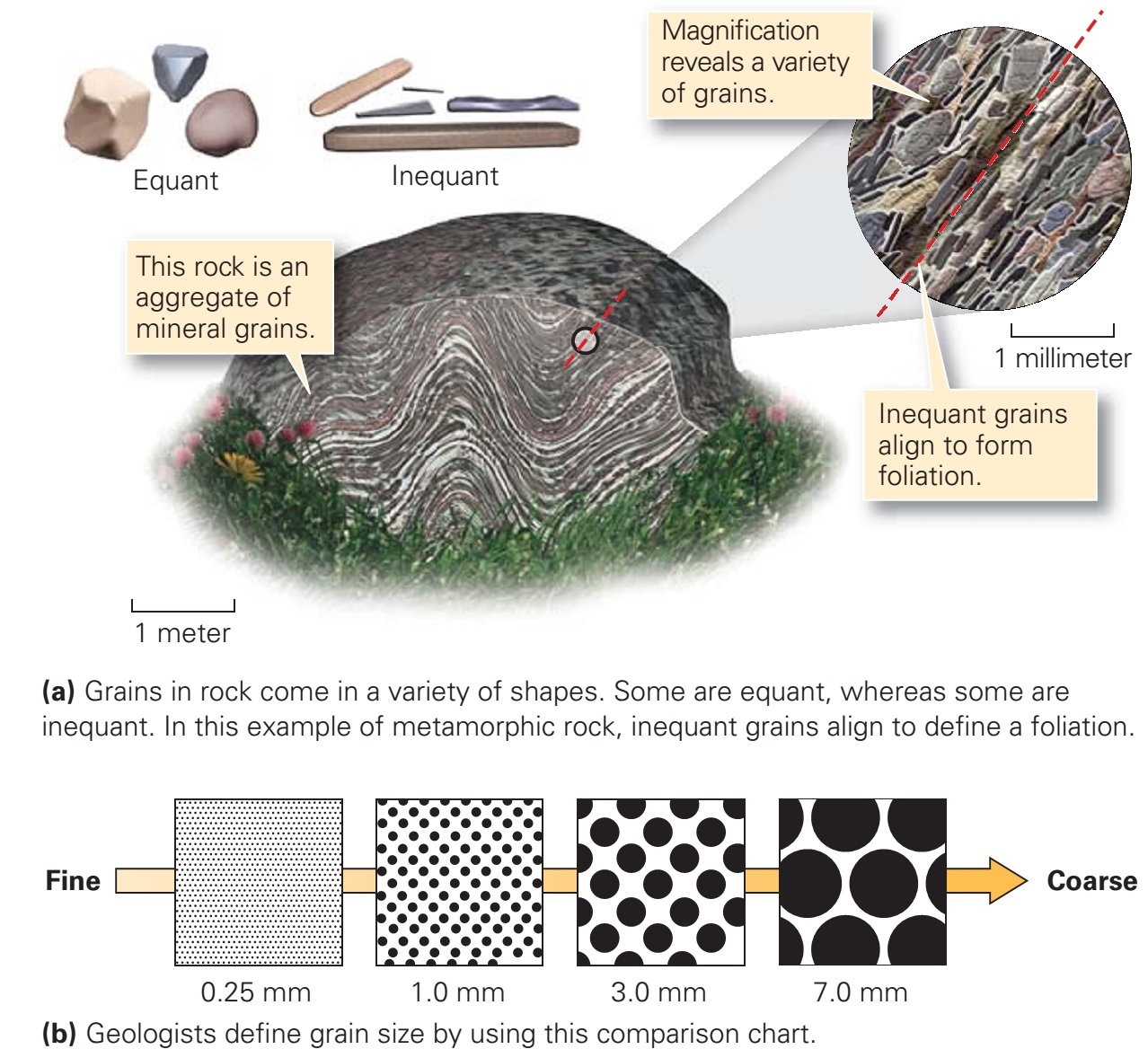 The Basis Of Rock Classi Cation Learning Geology