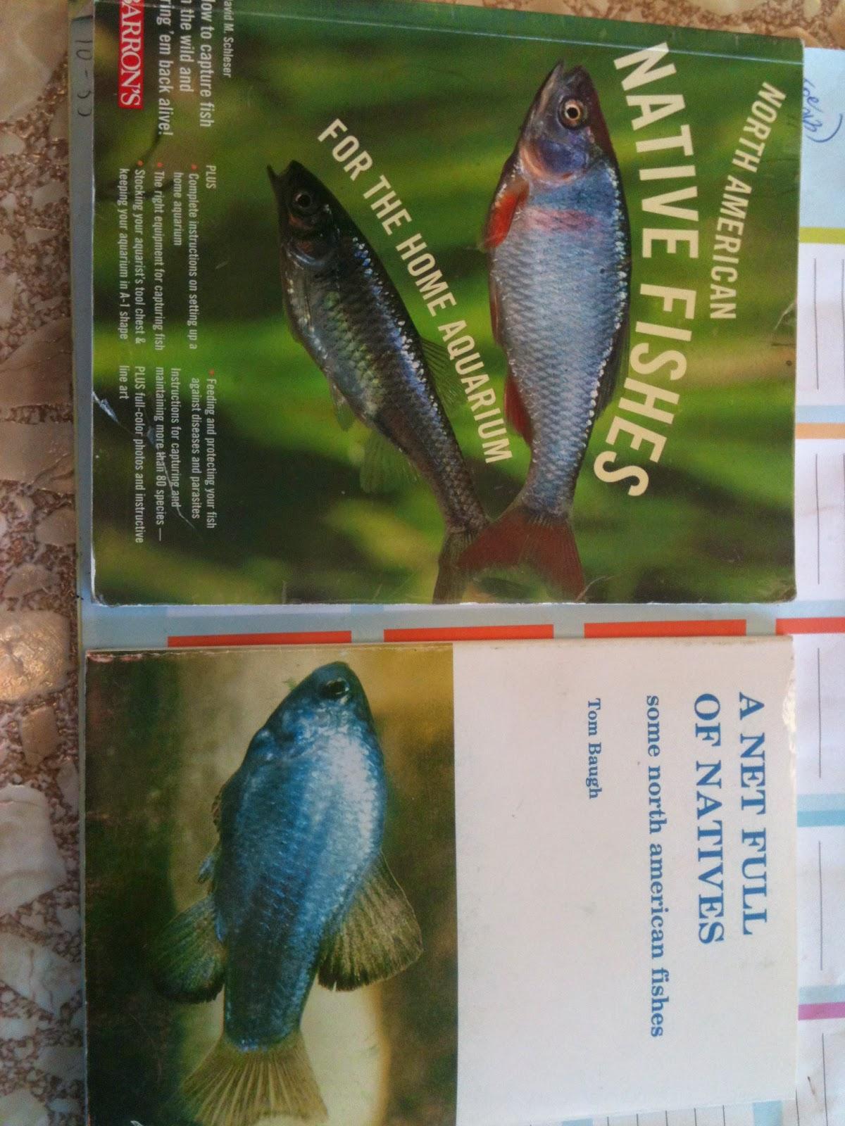 Finatics Tropical Fish : A US native fish tank?