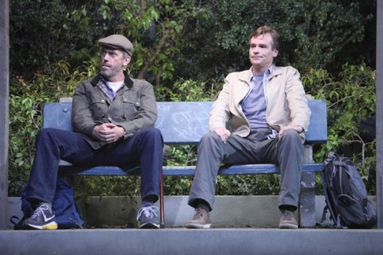 House and Wilson, eighth season