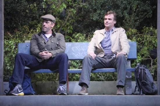 House and Wilson, eighth season