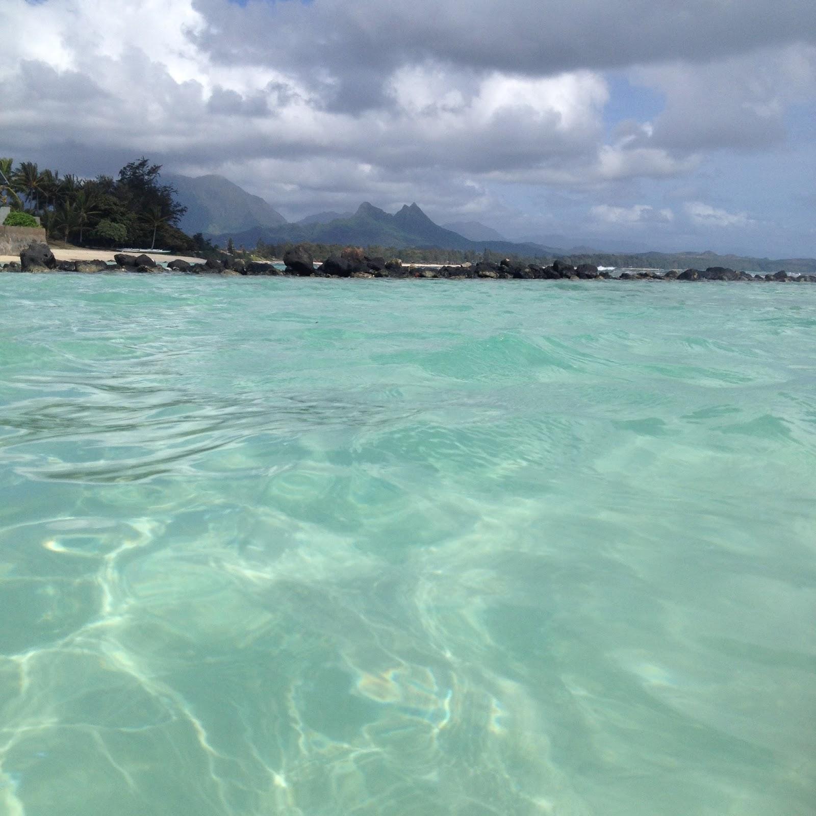 Beach House In Oahu: The Project Spot: Aloha-My Top Oahu Vacay Tips