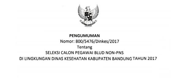 Lowongan Kerja   Non PNS Dinas Kesehatan Kabupaten Bandung [95 Formasi]  Agustus 2018