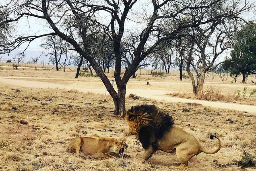 África do Sul, África