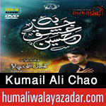 http://www.humaliwalayazadar.com/2015/10/kumail-ali-chao-nohay-2016.html