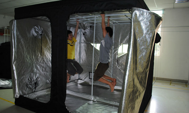a d ventures beginner s setup for growing cannabis indoors easy indoor grow setup. Black Bedroom Furniture Sets. Home Design Ideas