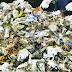¿Qué pasará con las basuras?