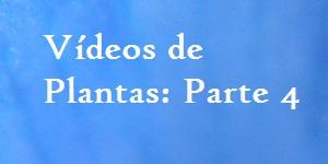 Vídeos de Plantas