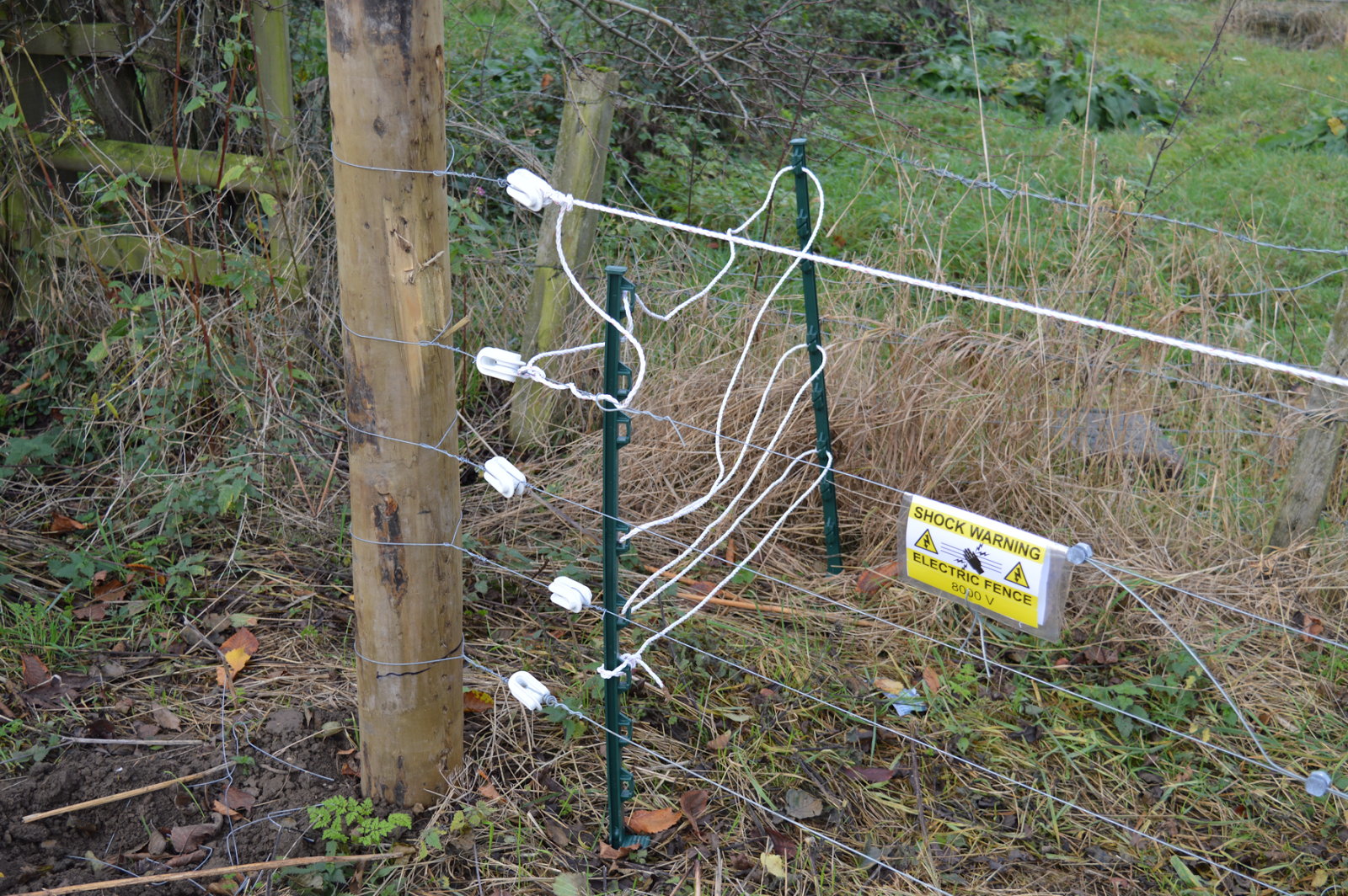 Five strand Electric fence at Turnditch Orchard