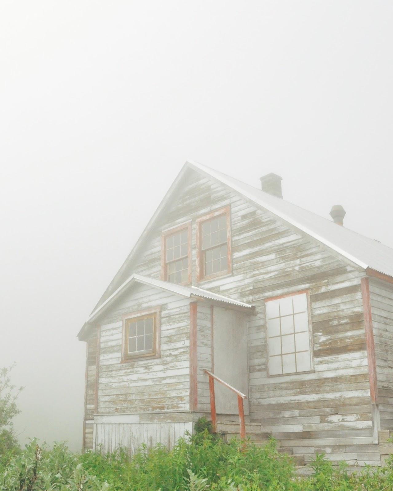 foggy abandoned gold