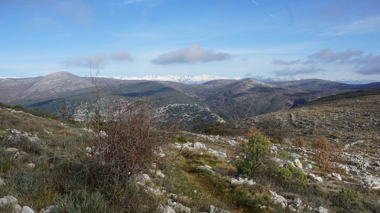 Mercantour summits seen from les Blaquières