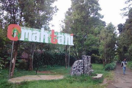 Omah Tani Batang Jawa Tengah